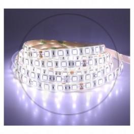Bandeau LED 6000°K 5 m 60...