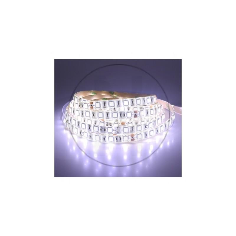 Bandeau LED 6000°K 5 m 60 LED/m 24W IP65  PU