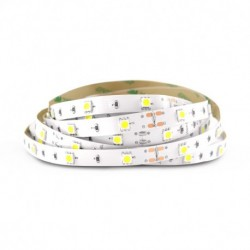 Bandeau LED  6000°K 5 m 30 LED/m 36W IP20