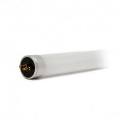 Tube LED T5 12W 4000°K 850 mm