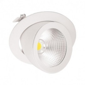 Spot LED Escargot Rond Inclinable/Orientable 30W 4000°K + Alimentation Electronique